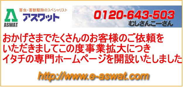 イタチ専門ホームページ