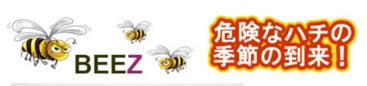 ハチに刺された時の対処法